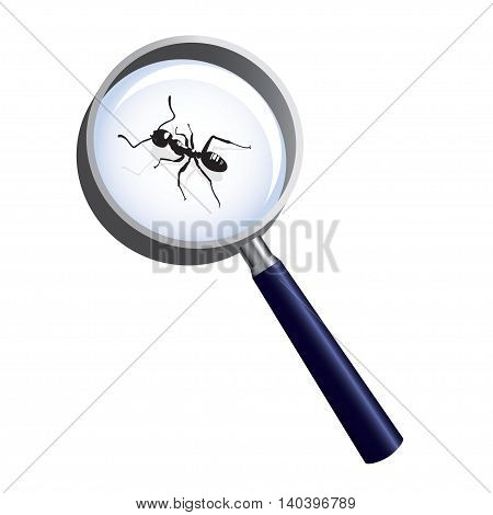 Ant under magnifying glass. Vector illustration of an insect. Concept of research