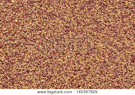 Roughcast brown-yellow rough decorative wall plaster closeup