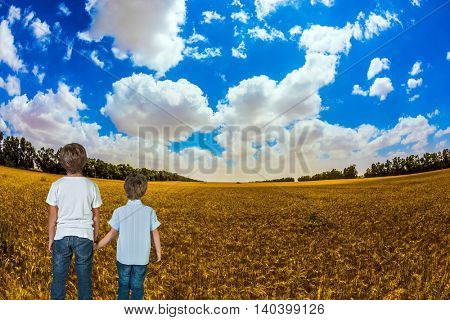 Two boys holding hands and looking at the wheat field. Israel spring