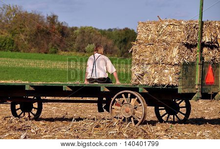 Lancaster County Pennsylvania - October 15 2015: Amish youth sitting on a wagon takes a break from baling hay