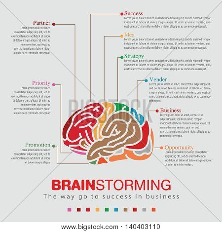 Infographic of business go to success with Brainstorming sprit color.