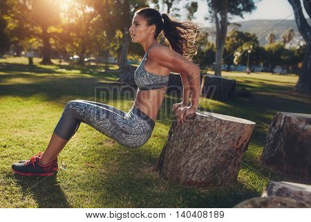 Healthy Young Woman Doing Arm  Exercise At The Park