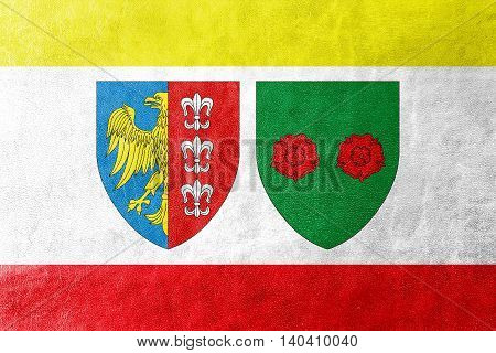 Flag Of Bielsko Biala, Poland, Painted On Leather Texture
