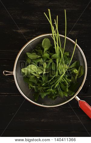Parsley and baby spinach in vintage strainer over black wooden background. Top view. Natural light. Space for text