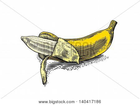 Drawing of isolated yellow partially peeled banana on the white