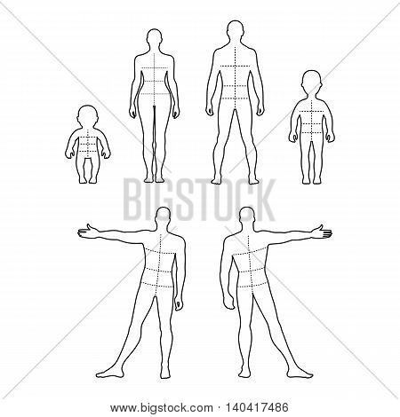 Full length front back outlined human silhouette vector illustration with marked body's sizes lines isolated on white