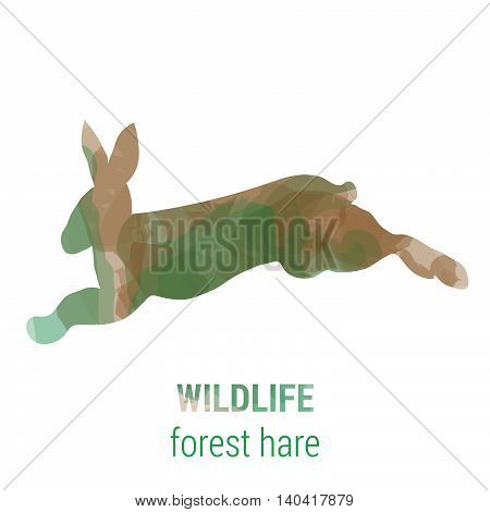 Wildlife banner on white background with colored watercolor silhouette forest animal hare. Poster for mammals, journey, park culture.