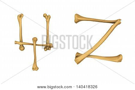 3D illustration of Skeleton alphabet Y and Z isolated on white background