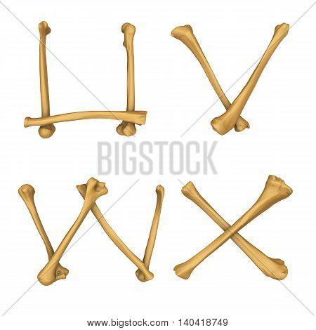 3D illustration of Skeleton alphabet U-X isolated on white background