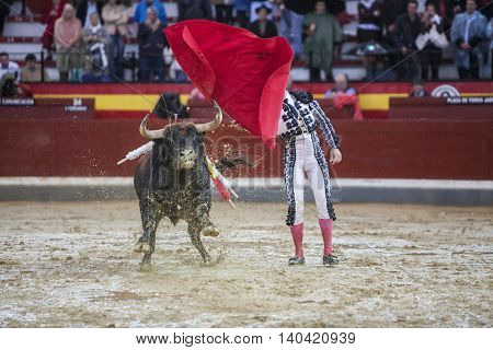 Jaen SPAIN - October 18 2008: The Spanish Bullfighter Manuel Jesus El Cid during a rainy afternoon bullfighting with the crutch in the Bullring of Jaen Spain