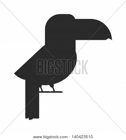 Bird black silhouette vector illustrations nature design. Wildlife wing bird black silhouette and drawing feather animal. WIld bird isolated on white