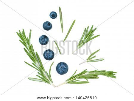 Isolated juicy green rosemary and blueberry on a white background