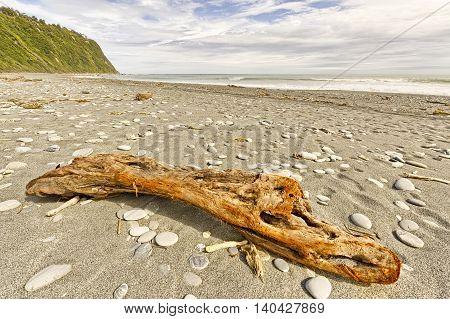 Driftwood and pebbles on Okarito Beach, New Zealand