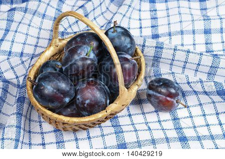Ripe plums in basket on blue tablecloth