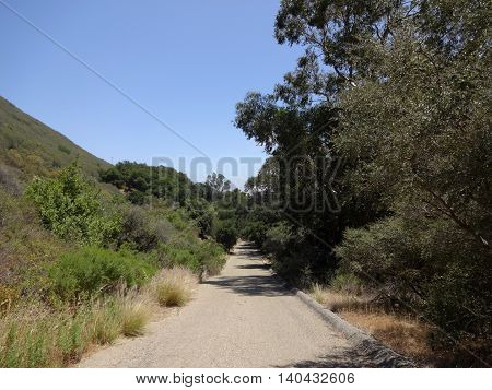 Paved Gravel Road way surrounded by trees in hills of Santa Barbara California.