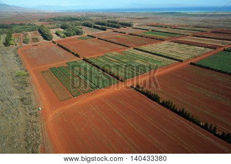 Aerial of Farm fields of different stages of age running to the ocean and Maui in the distance on Molokai Hawaii. April 2016.