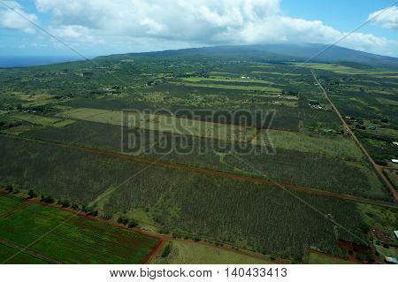 Aerial of Farm fields of different stages of age running to the Mountains on Molokai Hawaii. April 2016.