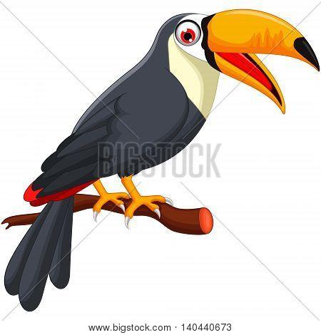 Cute cartoon toucan bird on a branch