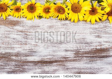 Line from yellow sunflowers on the wooden background with copy space for text or slogan