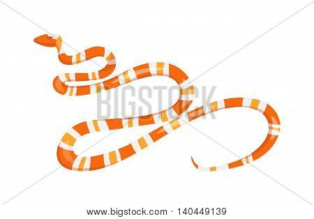 Vector viper flat snake isolated on white background. Vector viper snake flat style. Flat viper snake skin pattern. Poisonous reptyle vector icon