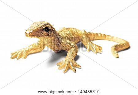 Decorative golden lizard or gecko, isolated on white