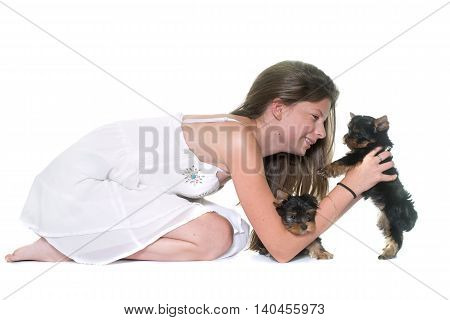 young yorkshire terrier and child in front of white background
