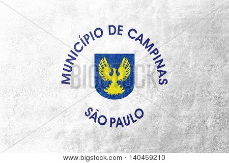 Flag Of Campinas, Sao Paulo State, Brazil, Painted On Leather Texture