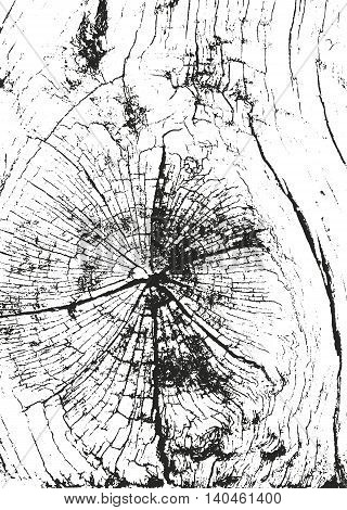 Distressed overlay wooden bark texture grunge vector background.