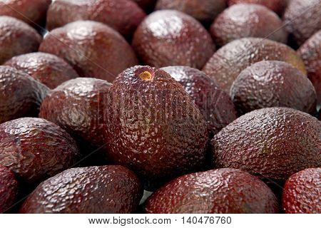 Avocado fresh fruit sweet mexican on background