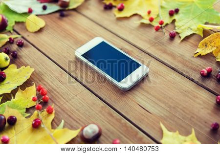 season, advertisement and technology concept - close up of smartphone in frame of autumn leaves, fruits and berries on wooden table