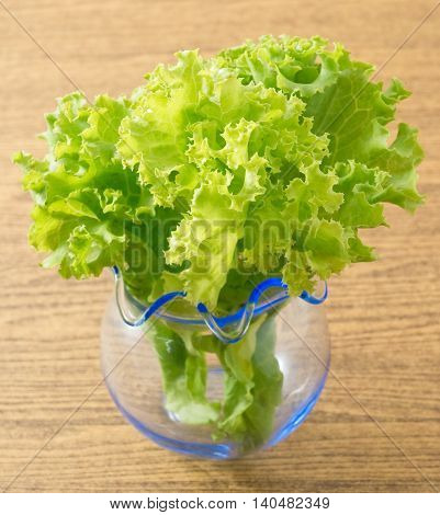 Vegetable Delicious Fresh Green Lettuce Leaves in A Small Glass Vase.