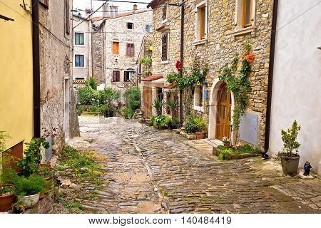 Town of Buje cobbled old steet Istria Croatia