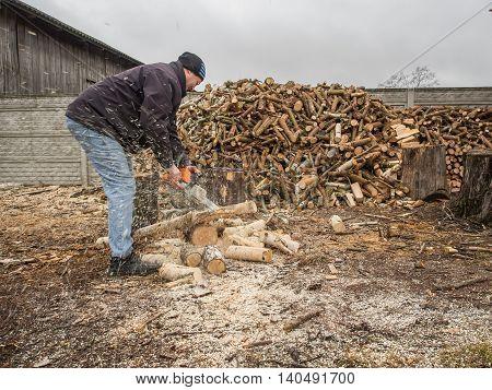 Bobrek Poland - February 10 2016: A polish farmer cutting wood for heating