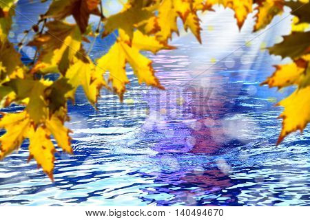 background image of autumn leaves over lake