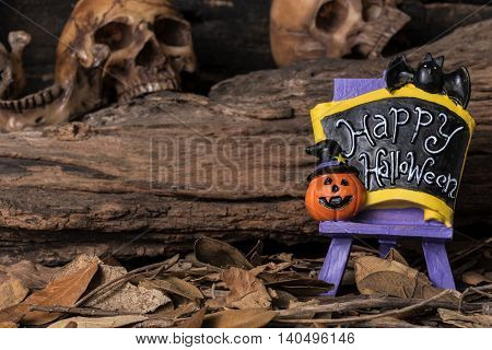 Jack-o-lantern and bat on happy halloween board with human skull and dry leaf in forest