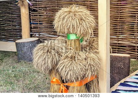 Several large sheaves of wheat are presented near braided fence as part of the decorations for the harvest festival.
