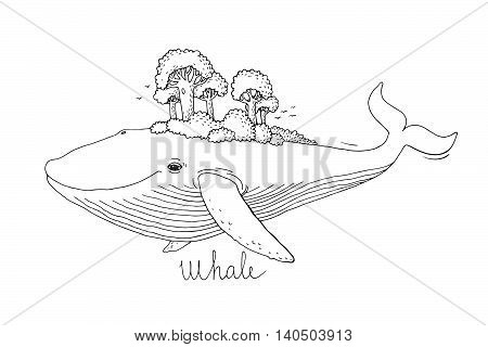 Big beautiful whale to the wood on the back. Hand drawing isolated objects on white background. Vector illustration. Animal in the sea and ocean.