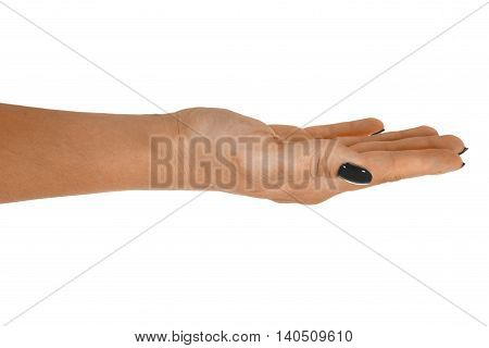 Open hand holding anything, adult woman's skin, black manicure. Isolated on white background.