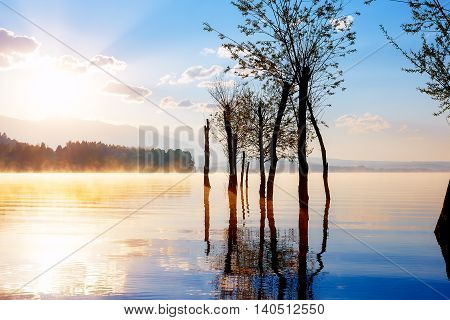 beautiful lake view in morning fog with mystic mountains and trees as leftovers of a mole in gold, purple - blue tones