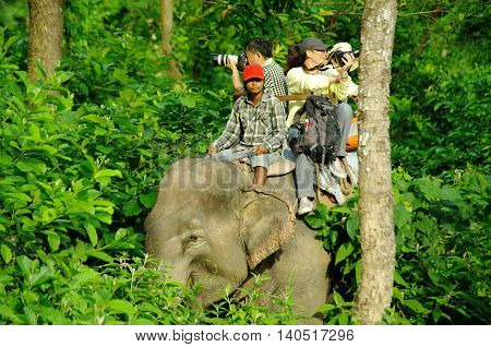 Chitwan,np-circa August 2012 - Tourists Doing Safari On Elephants Back, Circa August 2012 At Chitwan
