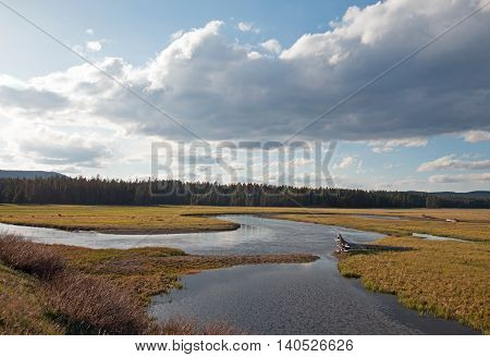 Pelican Creek at sunset next to Yellowstone Lake in Yellowstone National Park in Wyoming USA