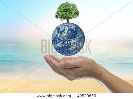 World on a human hand on a background blur sea and sky with light and bokeh. - Concept help preserve the world together. Elements of this image furnished by NASA.