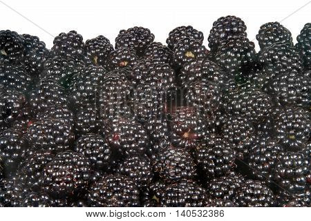image on white background scattering of blackberries
