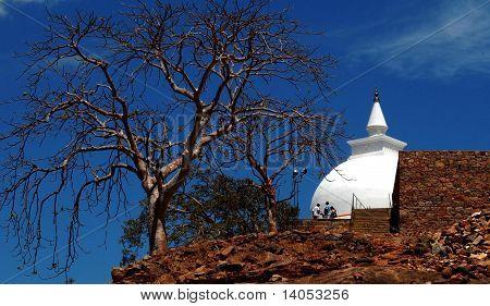 Sithulpawwa Dagoba in Anuradapura