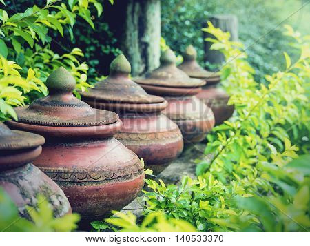 Clay pots used to put drinking water with green leaves background Traditional of northern Thailand Selective focus Vintage filter