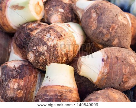 Closeup pile of fresh organic taro for retail sale in local market Thailand (selective focus)