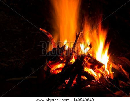 Bonfire burning firewood in fire from night camp in the forest. Flame from bonfire making warm in winter.