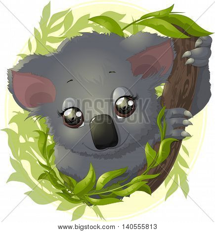 beautiful koala which holds the branch in the tree leaves