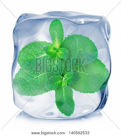 Mint Leaves Frozen In The Ice Cube Close-up Isolated On White Background.