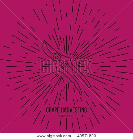 Grape picking trimming snips with star burst. Single logo in flat and thin line style isolated on white background. Outline winery symbol. Simple mono linear pictogram. Stroke vector logotype template